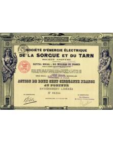 Sté d'Energie Electrique de la Sorgue et du Tarn
